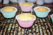 Vanilla Cupcakes with Cake Batter Frosting-2810