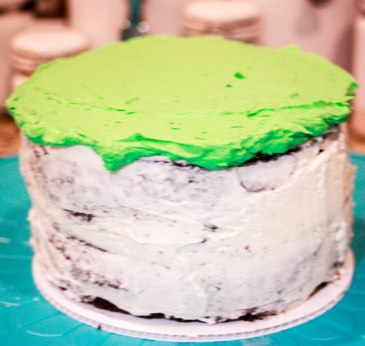 Best Buttercream + Ombre Cake-2892