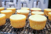 Lemon Cupcakes with Blackberry Buttercream-3119