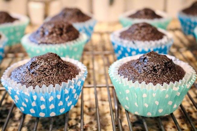 Nutella Smores Cupcakes-3315